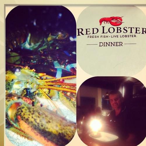 Red Lobster Restaurant Boynton Beach Florida Menu