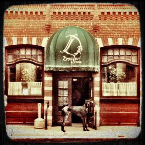 Drescher S Restaurant In Waterbury Ct 25 Leavenworth Street