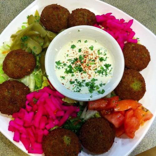 Oasis Mediterranean Cuisine in Warren, MI