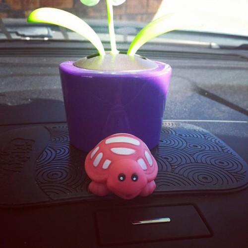 Sonic Drive-In in Hobbs, NM