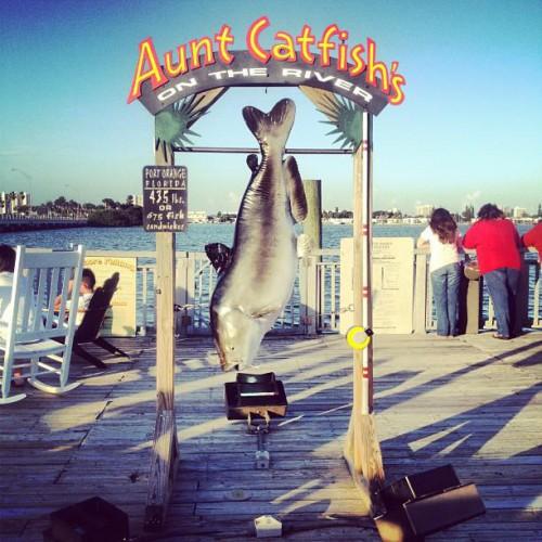 Aunt catfish 39 s on the river in port orange fl 4009 halifax drive - Aunt catfish port orange fl ...