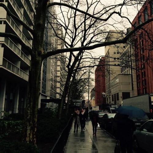 Kopi Kopi in New York, NY