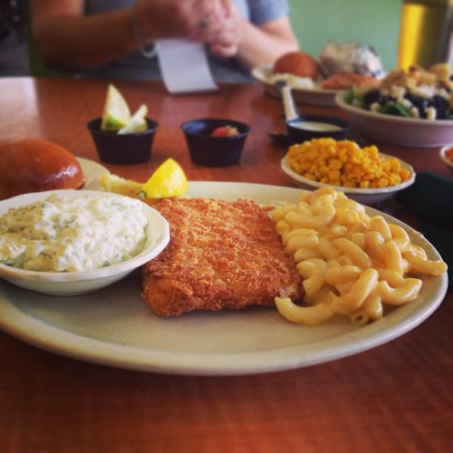 Luby 39 s downtown in san antonio tx 911 north main for Lubys fried fish