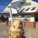 Handel's Homemade Ice Cream in Virginia Beach