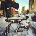 Sugar Bowl Coffee and Juice Bar in Edmonton, AB