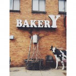A Baker's Wife's Pastry Shop in Minneapolis, MN
