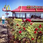 McDonald's in Montevideo
