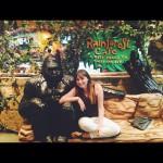 Rainforest Cafe in Anaheim, CA