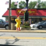 Mr Chicken in Willoughby
