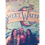 Bar fly in Safety Harbor, FL