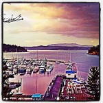 Vinny's in Friday Harbor