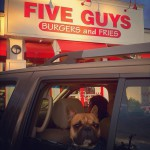 Five Guys Burgers and Fries in Enfield