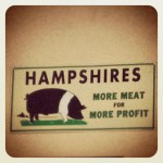 Somoke Shack BBQ in Boscawen, NH