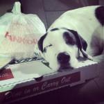 Guido's Pizza-Springdale in Springdale