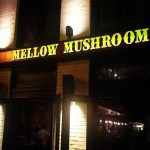 Mellow Mushroom in Washington, DC