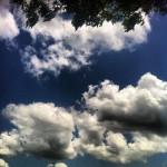 Sirloin Stockade in Okmulgee