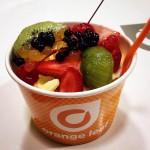 Orange leaf Yogurt at the Rim in San Antonio