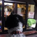 Burger King in Bridgewater