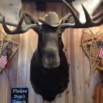 Moose Creek Barbecue in Arlington