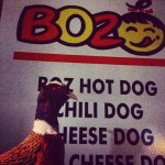 BOZ Hot Dogs in Morris