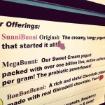 SunniBunni SR64 Yogurt and Organic Fruit Smoothies in West Bradenton, FL
