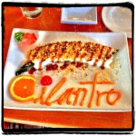 Cilantro Thai and Sushi Restaurant in Akron, OH