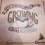 Caribou Coffee in Cockeysville