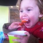 The Pink Walrus Frozen Yogurt in Lafayette