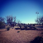 Posada Java in Green Valley, AZ