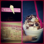 Willow Glen Frozen Yogurt Co in San Jose