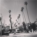 Farsalla Trattoria Inc in Los Angeles