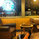 Starbucks Coffee in Palmdale, CA