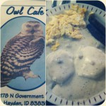 Owl Cafe in Hayden