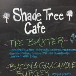 shade tree customs & cafe in Albuquerque, NM