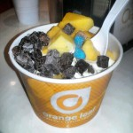 Orange Leaf Self Serve Frozen Yogurt