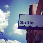 Saltie in Brooklyn, NY