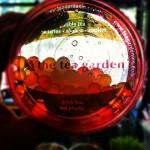 The Tea Garden in Saint Paul, MN