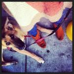 The Slaw Dogs in Pasadena, CA