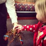 Red Lobster in Salt Lake City, UT
