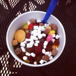 Delish Frozen Yogurt in Orlando