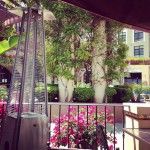 El Cholo Cafe in Pasadena, CA