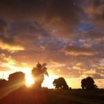 Lighthouse Bistro in Kilauea, HI