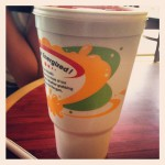 Robeks Fruit Smoothies & Healthy Eats in Vernon Hills