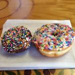 Delicious Donuts in Portland