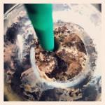 Starbucks Coffee in Vernon Hills