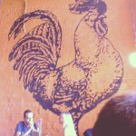 Rooster in Saint Louis, MO