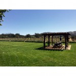 Melville Vineyards & Winery in Lompoc