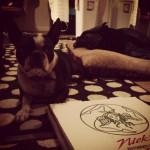 Nick's Pizza Ristorante Italiano in Costa Mesa
