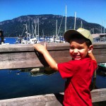 Rock Cod Cafe in Cowichan Bay, BC