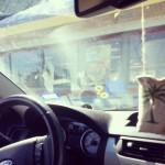 Burger King in San Antonio